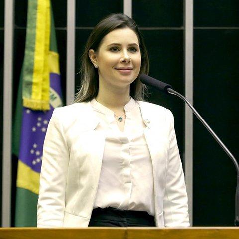 Deputado CAROLINE DE TONI