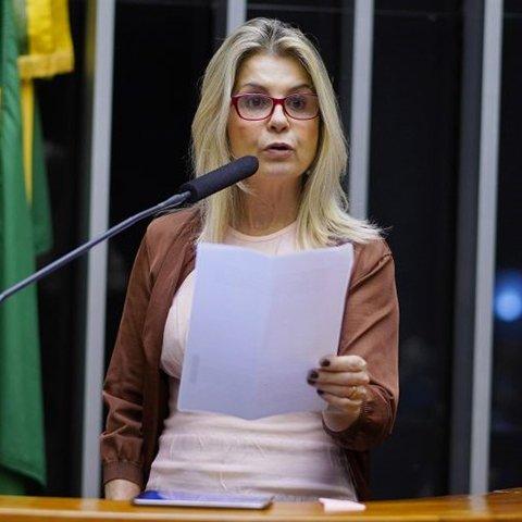 Deputado DRA. SORAYA MANATO