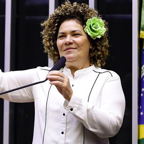 Deputado PERPÉTUA ALMEIDA
